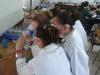 Chemistry Detectives